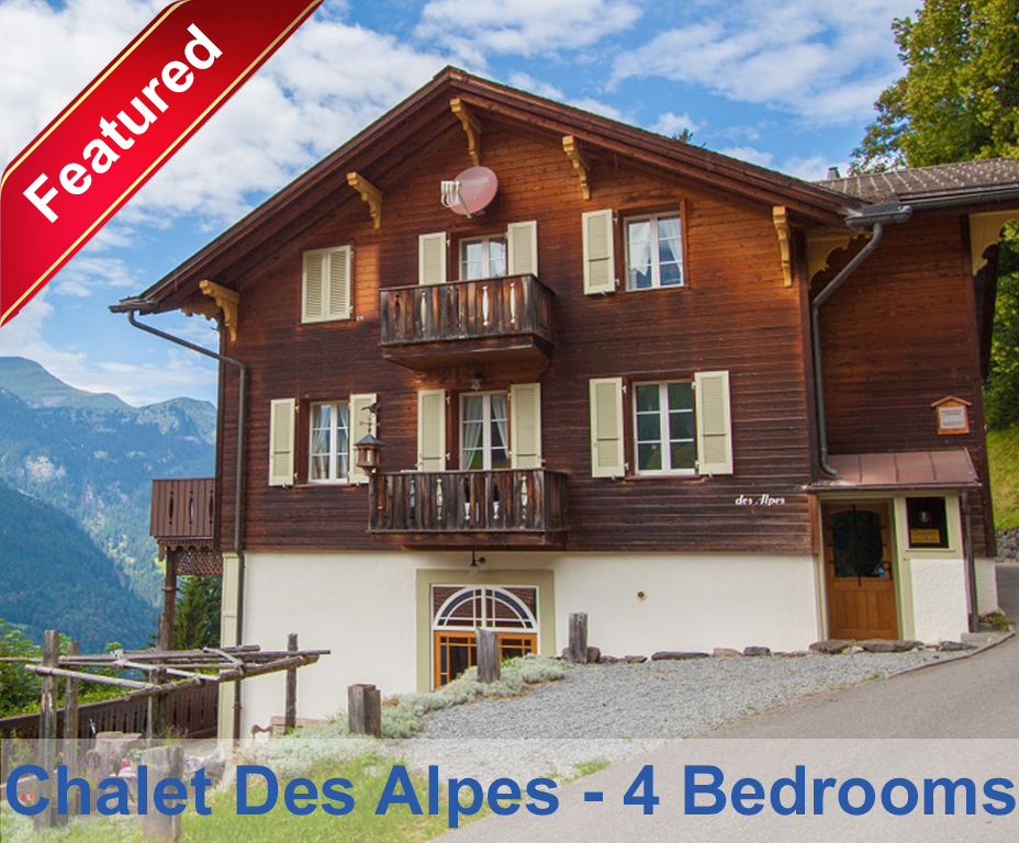 wengen chalets apartment rent chalets wengen chalets. Black Bedroom Furniture Sets. Home Design Ideas
